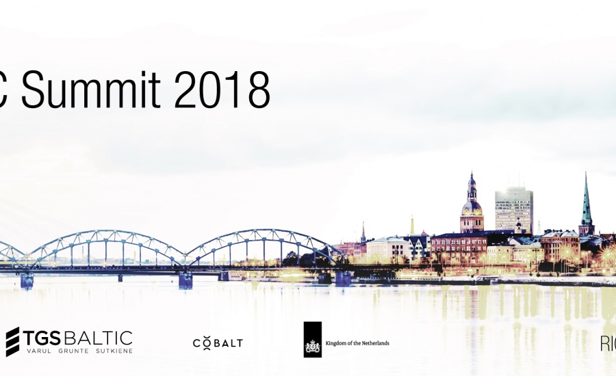 Baltic VC SummitStartup and Investor Matchmaking event